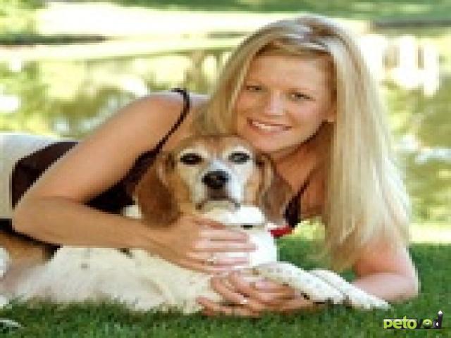 Почему собаки любят, когда их ласкают