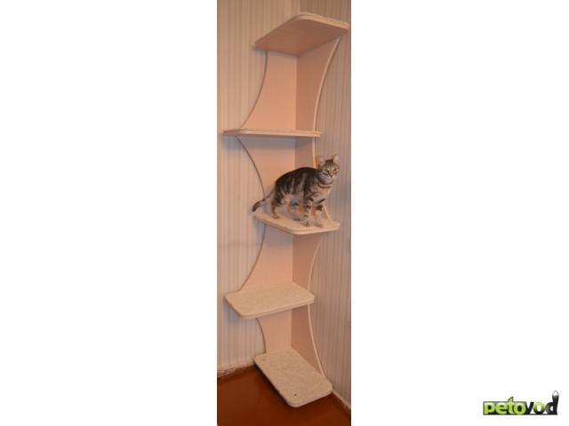 """Продаю: Игровой комплекс для кошки """"Эверест"""" фото3"""