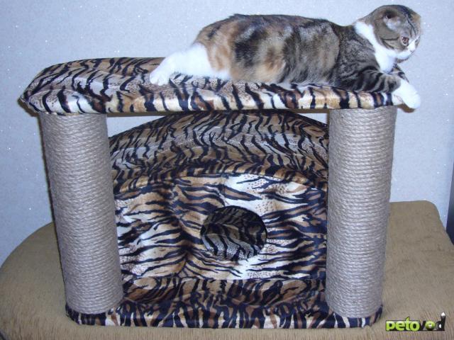 Продаю: Домики для кошек фото3