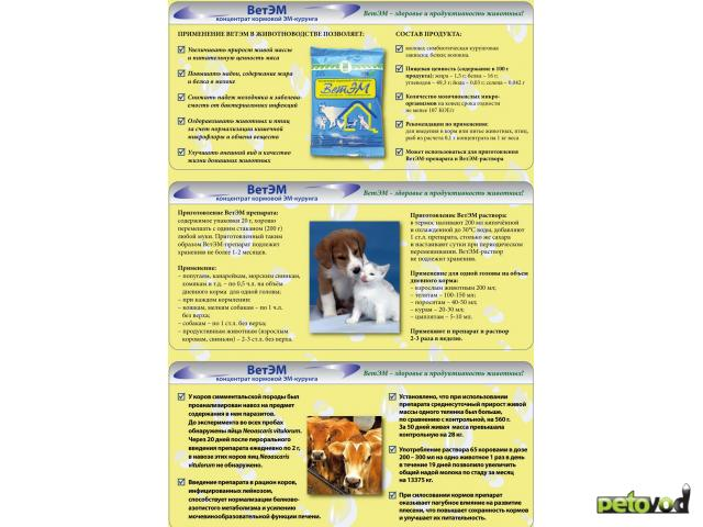Предлагаю услуги: Охрана здоровья животных, рыб и птиц фото2