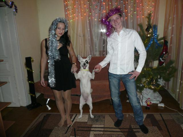 Потерялся/Нашелся: Пропала любимая собака, Астрахань