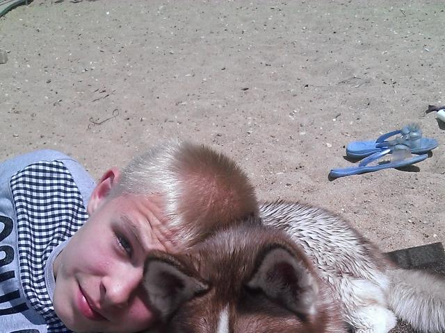 Потерялся/Нашелся: Пропала собака фото3