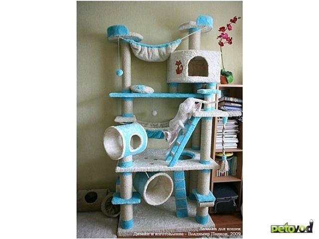 Продаю: Домики и Игровые комплексы для кошек и котов фото3